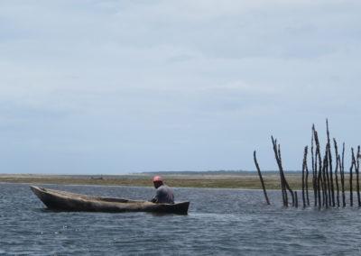 Funzi Island - Visser