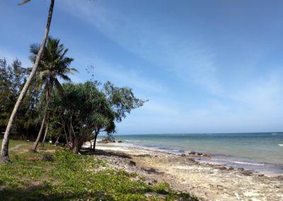 Diani Beach - Strand